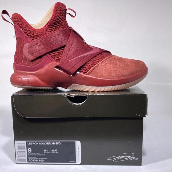 Nike Shoes | Nike Lebron James X1 12